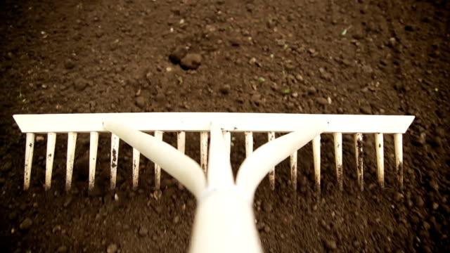 vídeos de stock e filmes b-roll de raking solo - ancinho equipamento de jardinagem