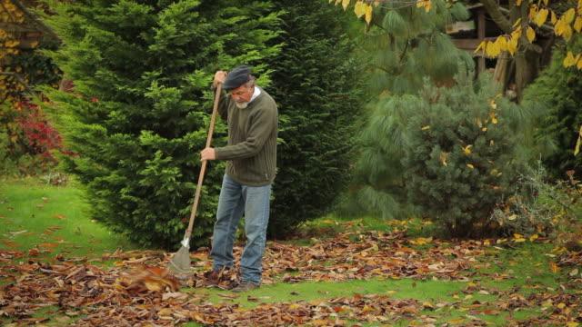 raking - grounds stock videos & royalty-free footage