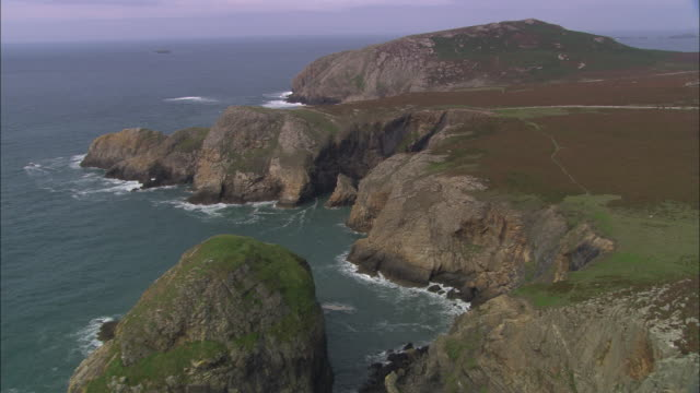 ramsey island - pembroke stock videos & royalty-free footage