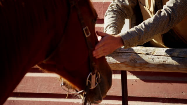 Ranch hand bonding with horse Dude Ranch Canada