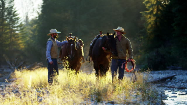 Ranch hands walking horses in forest valley Canada
