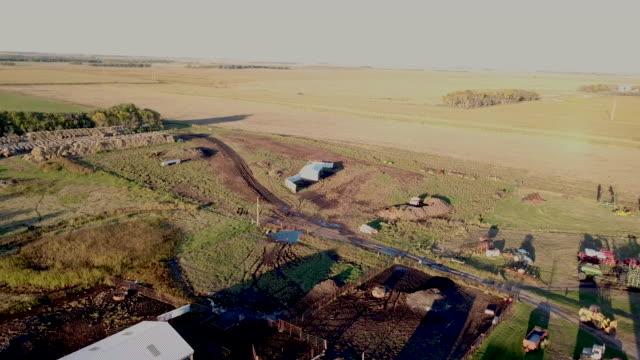 牧場の家と牧草地 - cereal plant点の映像素材/bロール