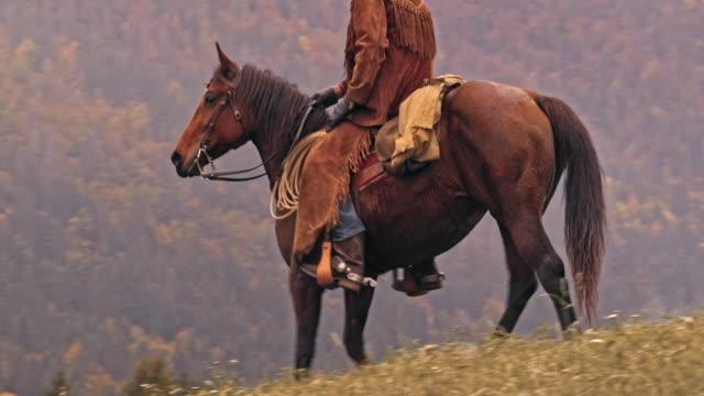 DS-Rancher den Hügel hinunter auf seinem braunen Pferd Reiten