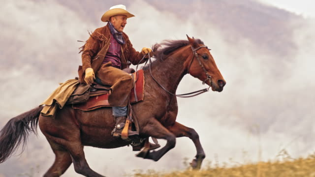slo mo ds rancher riding uphill on horse in gallop - rancher stock videos & royalty-free footage