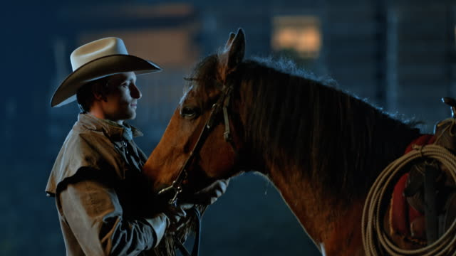 slo mo ds rancher stroking his horse at night - one man only stock videos & royalty-free footage
