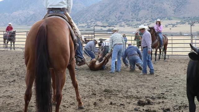 Rancher Vieh-Branding