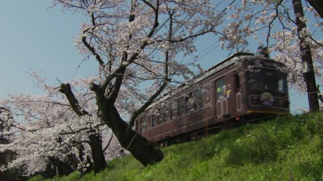 Randen Tram Lines In Kyoto