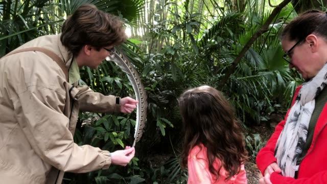 ranger explains bird feather to tourist at orlando disney animal kingdom - 公園保安官点の映像素材/bロール