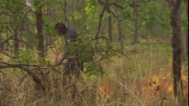 a ranger sets dry grass on fire. - 公園保安官点の映像素材/bロール