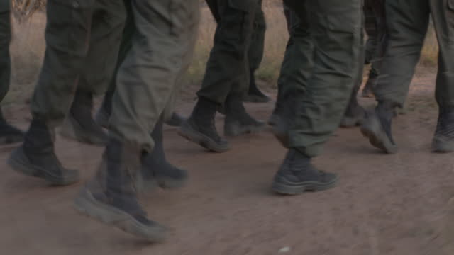 rangers training to combat rhino poaching, south africa - military fitness stock videos and b-roll footage