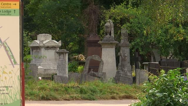 ranjith kankanamalage murder: tower hamlets cemetery park general views; england: london: tower hamlets: mile end: ext gvs tower hamlets cemetery... - crime and murder stock videos & royalty-free footage