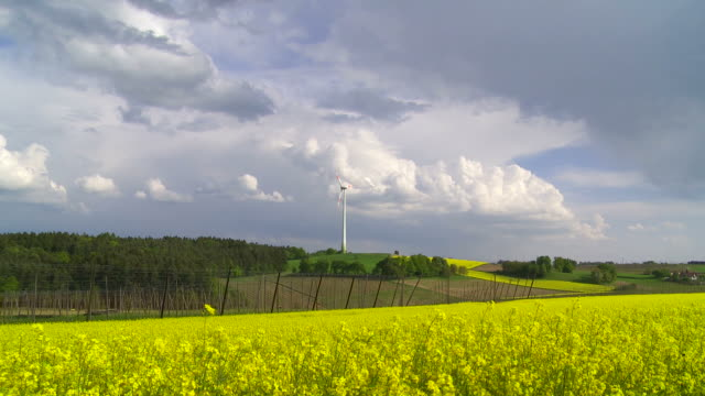 Rape Field in Front of a Wind Turbine (Time Lapse)
