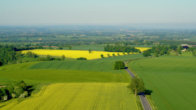 rapeseed oil field & countryside view, a170, north yorkshire, england - rapeseed oil stock videos and b-roll footage