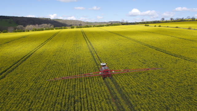rapeseed spraying - agriculture stock-videos und b-roll-filmmaterial