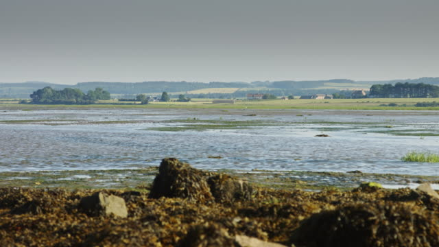 rapidly moving tide on lindisfarne - holy water stock videos & royalty-free footage
