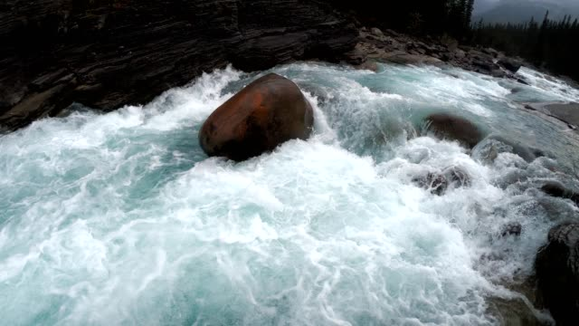 rapids flowing in rocky mistaya canyon at icefields parkway, alberta, canada - rapids river stock videos & royalty-free footage