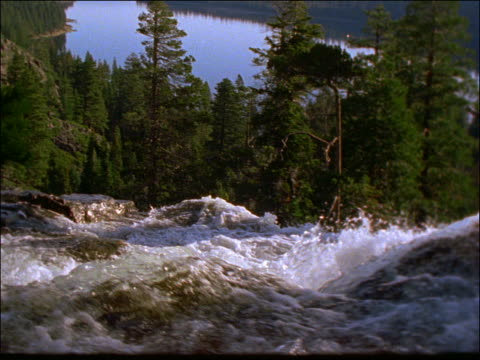 rapids in river with pine forest in background / lake tahoe, california - pinacee video stock e b–roll
