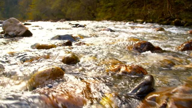SLO MO Rapids no Rio
