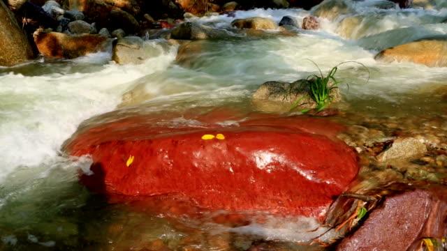 rapids red rocks - harmony stock videos & royalty-free footage