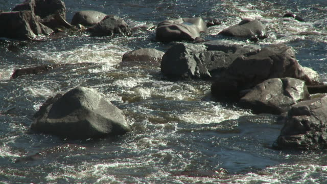 SLO MO, CU, Rapids streaming through boulders, Chippewa falls, Sault Ste. Marie, Ontario, Canada