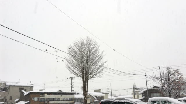 rare footage of lightning and thunder during a snow storm in northern japan - lightning strike stock videos and b-roll footage