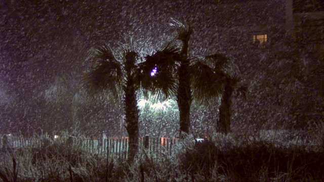 rare heavy snow falling on palm trees in myrtle beach, south carolina at night. - carolina beach stock videos & royalty-free footage