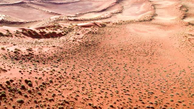 aerial rare plants in namibian desert - namibian desert stock videos and b-roll footage
