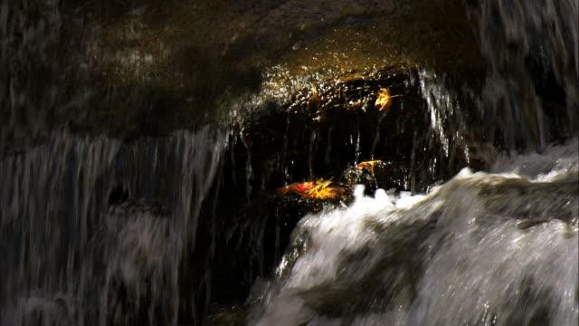 rarumanai nature park  rarumanai falls closeup - stein fels stock-videos und b-roll-filmmaterial