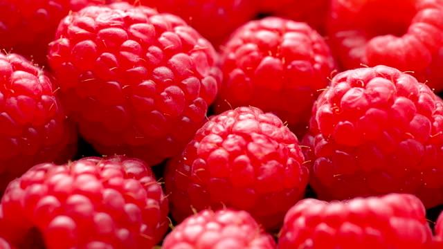 vídeos de stock, filmes e b-roll de rasberry - framboesa