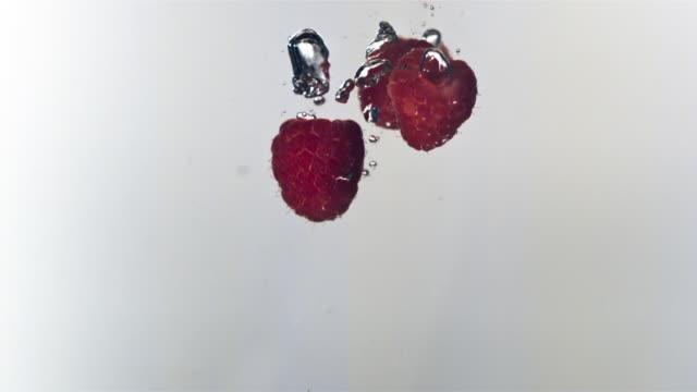 vídeos de stock, filmes e b-roll de cu, slo mo, raspberries falling into water liquid, studio shot - framboesa
