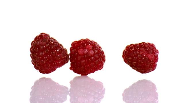 raspberries, rubus idaeus, fruits falling against white background, slow motion - raspberry stock videos & royalty-free footage