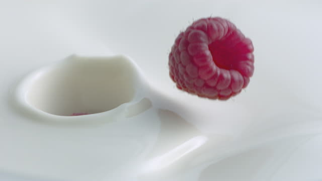 raspberries splash as they fall into milk in slow motion. - raspberry stock videos and b-roll footage