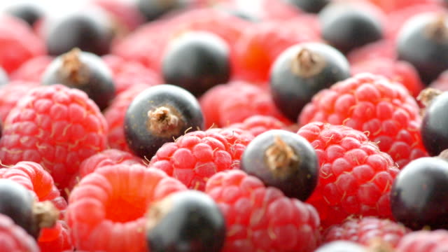 raspberry and black currant, close up