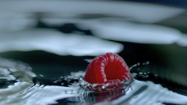 a raspberry drops into water. - raspberry stock videos and b-roll footage