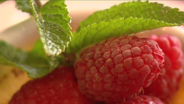 raspberry - brambleberry stock videos & royalty-free footage