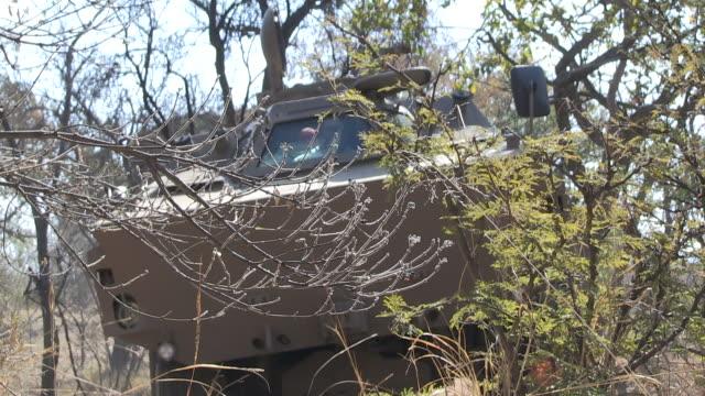 ratel military vehicle drives through scrubland. - durevolezza video stock e b–roll