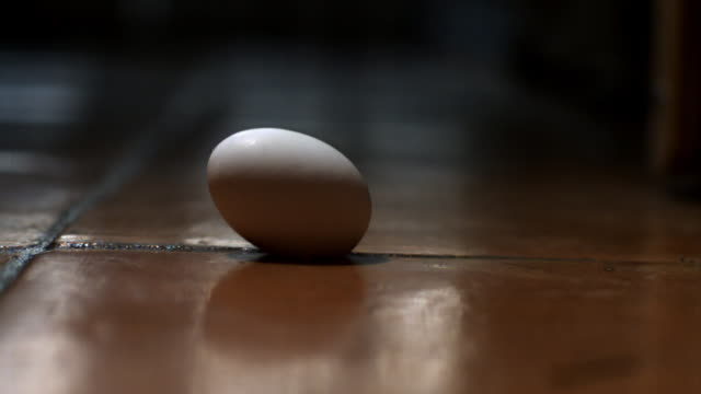 ms cu slo mo raw egg falls on floor and cracks - pavimento video stock e b–roll