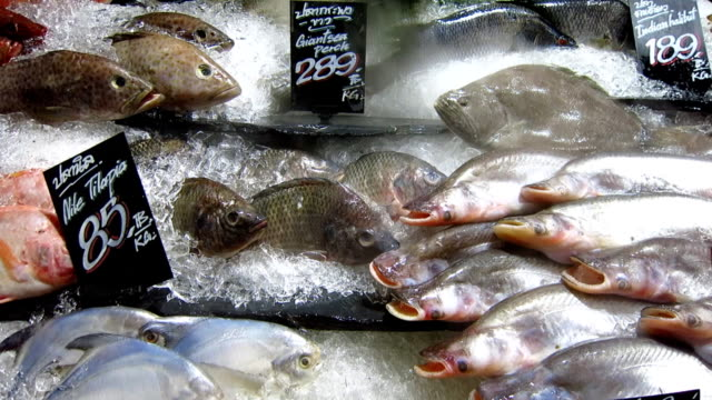 raw fish in supermarket