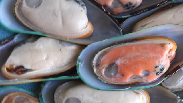 raw food: close up of mussels. mussels are a bivalve mollusk with a brown or purplish-black shell which are edible and considered a delicacy. - mollusk stock videos & royalty-free footage