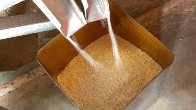 vídeos de stock, filmes e b-roll de produtos de arroz cru - arroz alimento básico