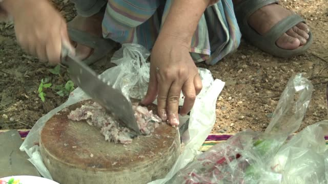 raw riverfish ground with spices and a dash of lime juice is a coveted culinary treat in thailand's northeast - dish dash stock videos & royalty-free footage