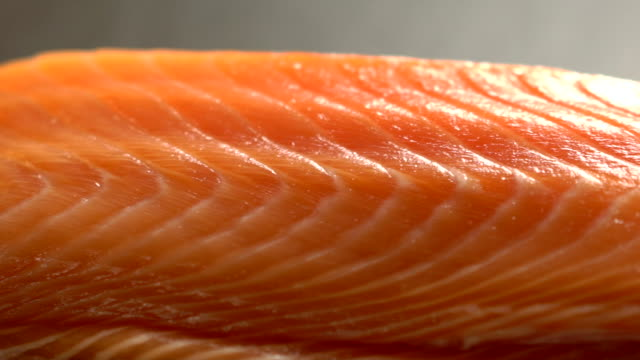 raw salmon in kitchen bar at the japanese restaurant - salmon stock videos & royalty-free footage