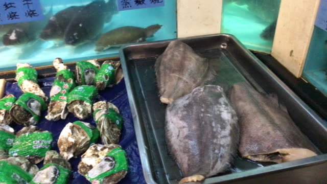 raw seafood for chinese restaurant , beijing , china. - seafood stock videos & royalty-free footage