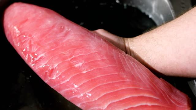raw tuna - animal body part video stock e b–roll