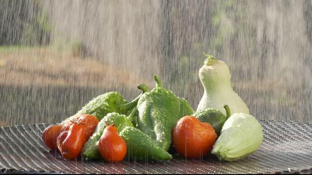 生ビーガン食品生鮮有機野菜 - 低炭水化物ダイエット点の映像素材/bロール
