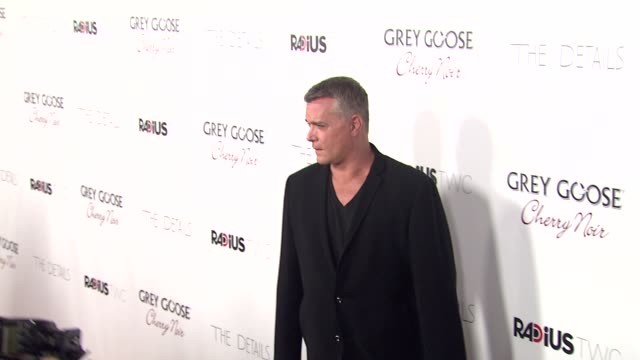 ray liotta at grey goose vodka hosts 'the details' premiere in hollywood 10/29/12 - grey goose vodka stock videos & royalty-free footage