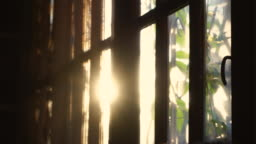 Rays of setting sun through the roller blinds on window.