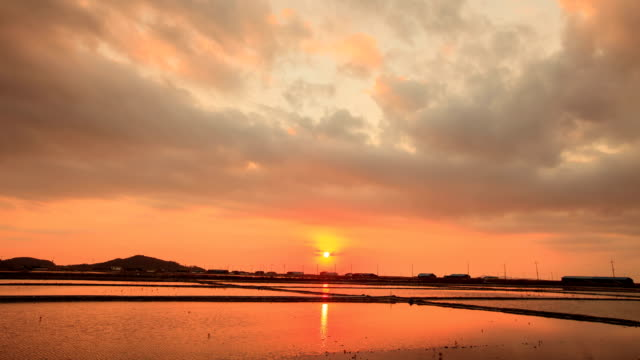 rays of sunlight over salt pans and wind turbines at sunset in jeollanam-do, yeonggwanggun, south korea - jeollanam do stock videos & royalty-free footage