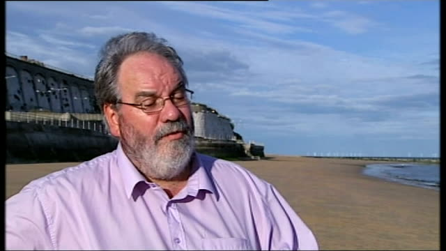 reaction to david cameron's plans for immigration and the eu kent south thanet ramsgate ext people along on beach with dog councillor chris wells set... - ramsgate stock videos & royalty-free footage