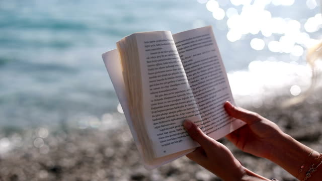 reading a book on the beach - book stock videos & royalty-free footage